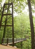 VA bridge